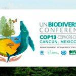 Objetivos alcanzados por México en COP13