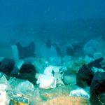 Impactos de las perforaciones marinas