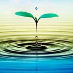 Agua, recurso vital