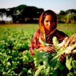 Mujeres, pieza clave para mitigar cambio climático