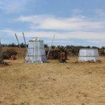 Utilizan madera residual para producir carbón vegetal en Tlaxcala