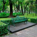 Indispensables áreas verdes urbanas: Greenpeace