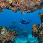 ¿Qué es el Arrecife Mesoamericano?