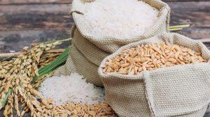 arroz-cambio
