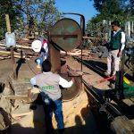 Desmantelan 9 aserraderos ilegales en CDMX