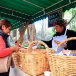 Asisten más de 2 mil personas a Mercado de Trueque