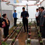 Investigadores trabajan en la automatización de invernaderos