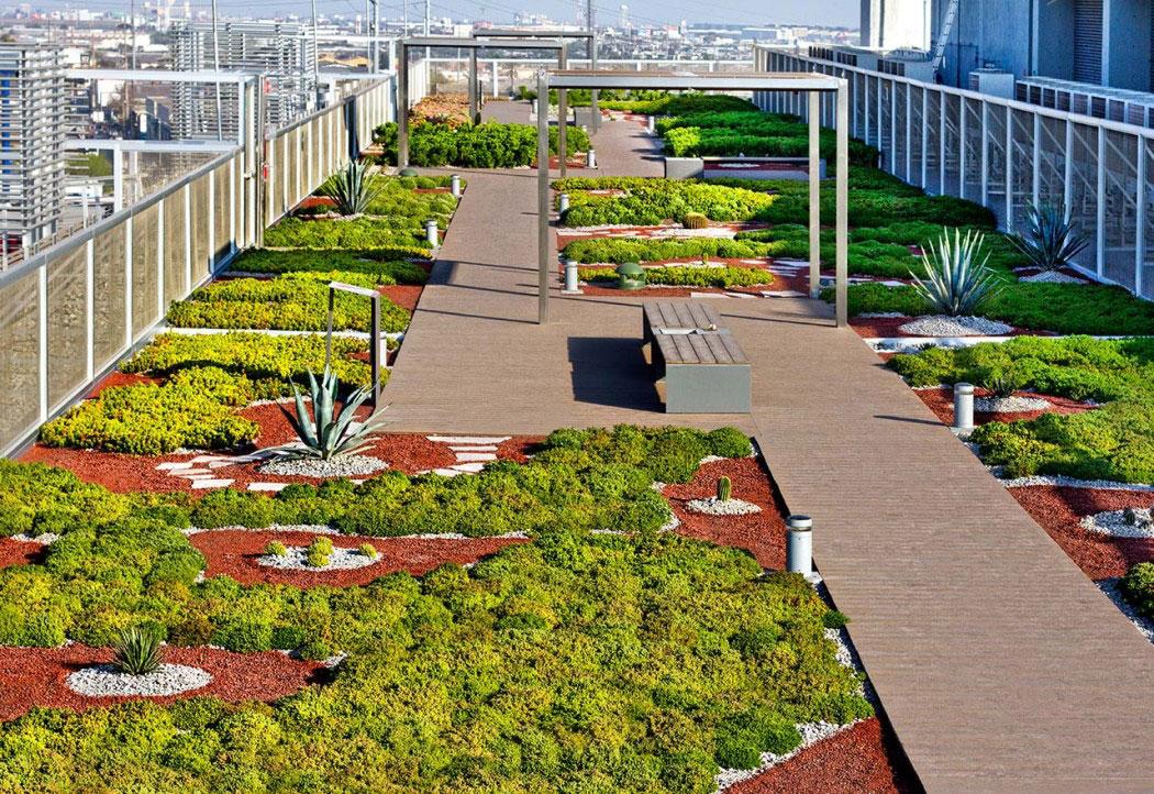Azoteas verdes teorema ambiental for Diseno de jardines en azoteas