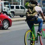 ¿Sabes cuál es el transporte más eficiente del mundo?