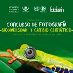 """Concurso de Fotografía """"Biodiversidad y Cambio Climático"""""""