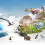 Biodiversidad a la venta