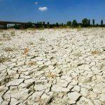 Cambio climático, el desafío que le costará a la UE 210 mmdd