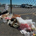 """Medio ambiente sufre un """"cáncer"""" llamado plástico"""