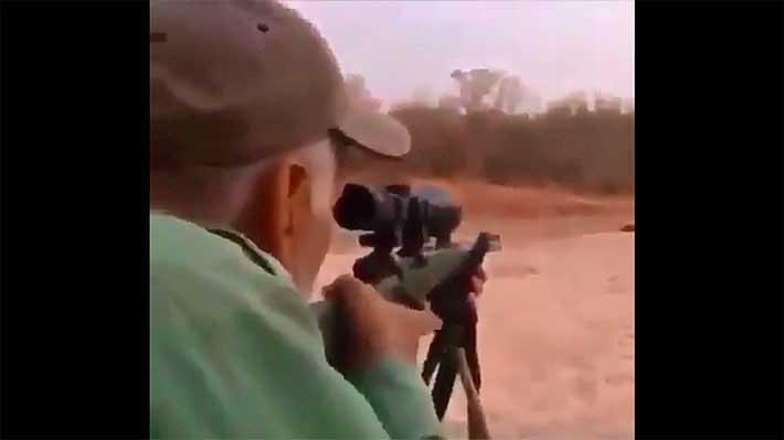 cazador-leon01