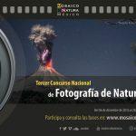 Conabio invita a su Tercer Concurso Nacional de Fotografía de Naturaleza