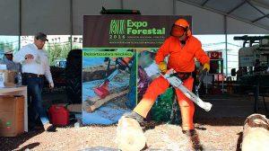 conafor-forestal01