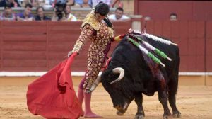 corridas-toros