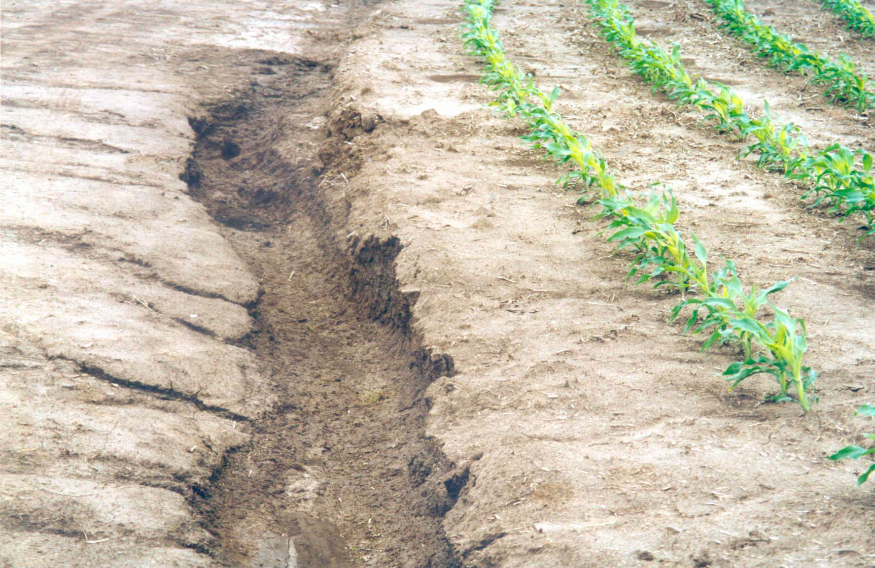 degrada-suelo