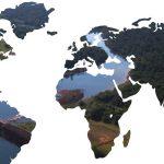 Desafíos y servicios ambientales