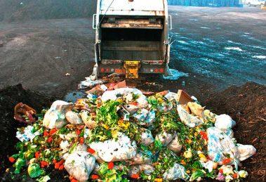 desperdicio-alimentos01