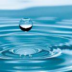 Día Mundial del Agua, más de 900 millones de personas sin el líquido