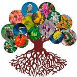 Sin diversidad biológica no existe diversidad cultural