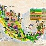 Especies en México