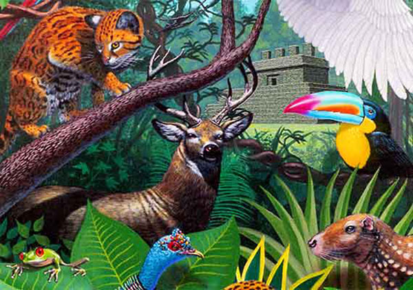 Encuestan a mexicanos sobre biodiversidad • Teorema Ambiental