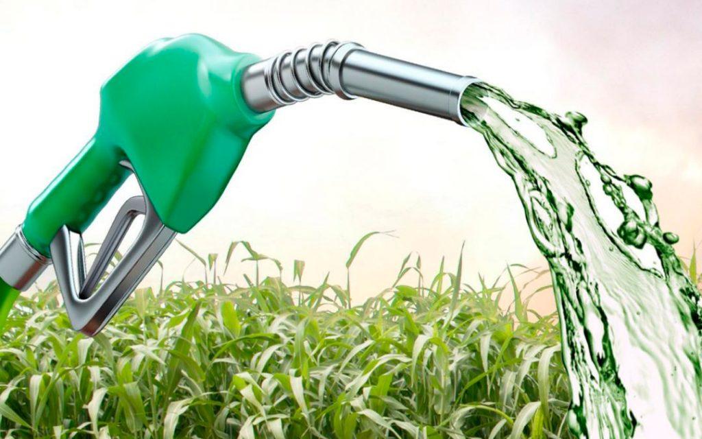 etanol-consumidor