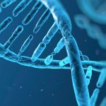 Estados Unidos regresa a debate sobre manipulación de ADN