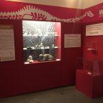 Arranca la Feria del Libro del Palacio de Minería con contenido sobre la naturaleza