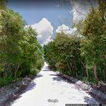 Google ahora te lleva a visitar áreas naturales protegidas de México