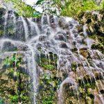 Hidalgo y Conabio cooperan para conservación de naturaleza