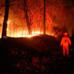 Incendios forestales contribuyen a cambio climático