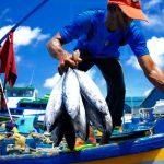 Impulsan sustentabilidad pesquera en México