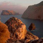 Islas de México y su biodiversidad invaden la TV