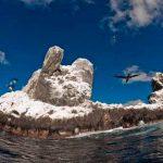 Revillagigedo, el parque nacional marino más grande de Norteamérica