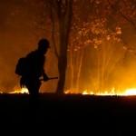 Jalisco entre los primeros estados afectados por incendios forestales