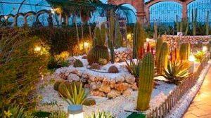 jardines-secos01