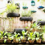 Jardines, un respiro para las ciudades