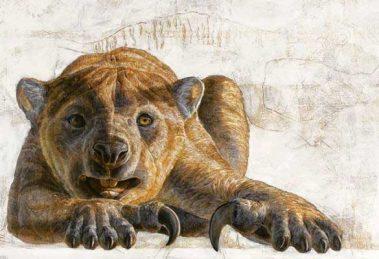 leon-marsupial