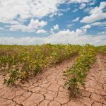 La Ley General de Cambio Climático con resultados en 2050