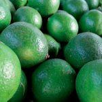 Limones mexicanos luchan contra dragón amarillo