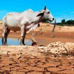 Lanzan llamado para apoyar ciencia ante cambio climático
