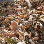 Logran investigadores sustituir gas natural por biogás generado de desperdicios