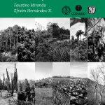 Los tipos de vegetación de México y su clasificación