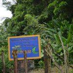 Los Tuxtlas, un reducto de selva virgen que vive en Veracruz