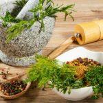 Nace maestría sobre plantas medicinales en México