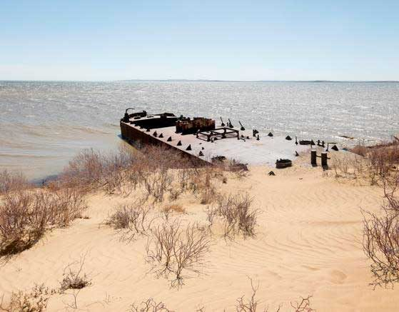 mar-aral01