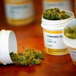 Aumentan pacientes con medicamentos derivados de mariguana